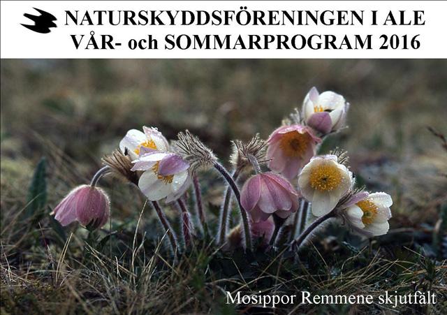 Vår- och Sommarprogrammet kommer att skickas ut nästa vecka