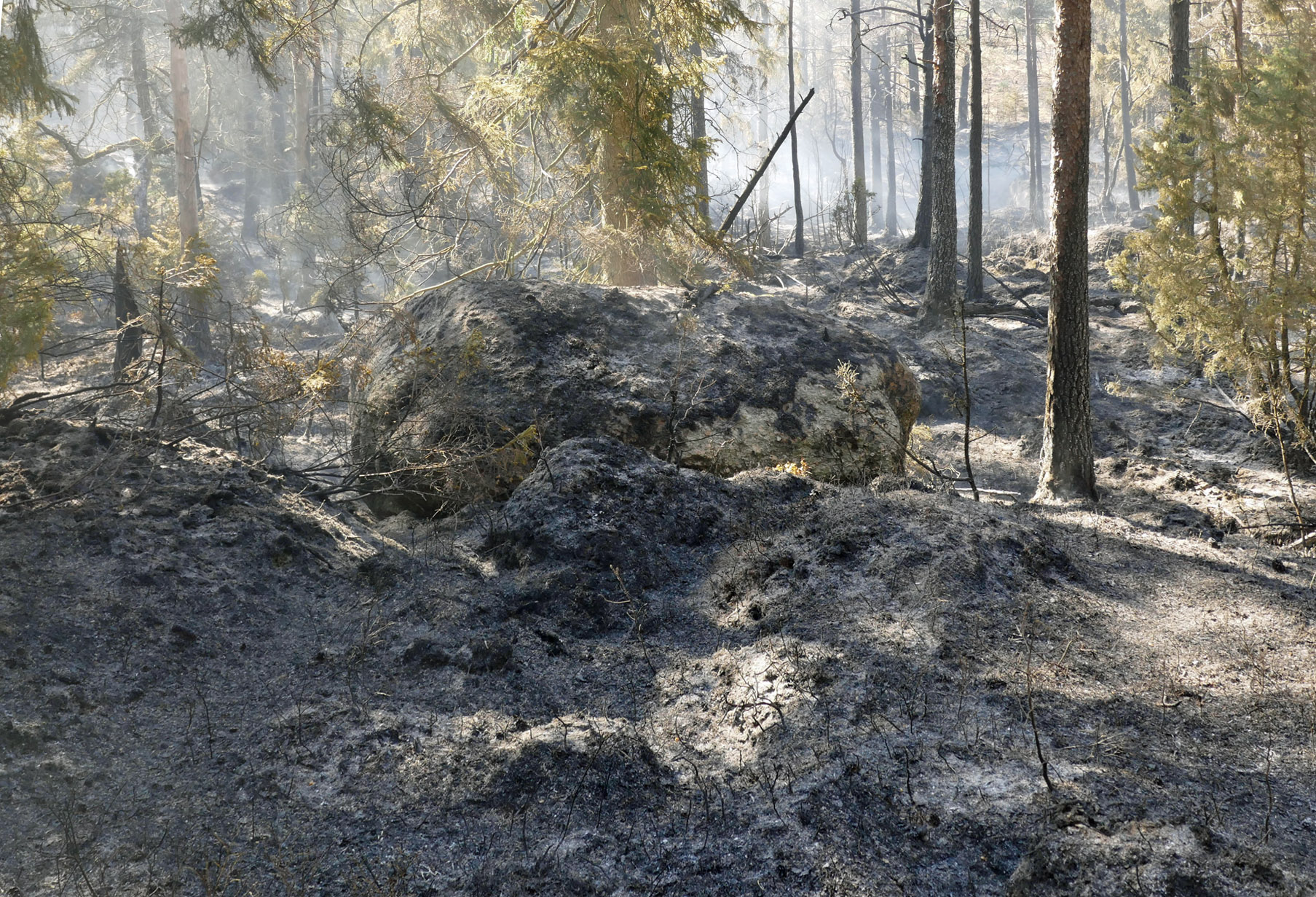 Brandområdet i Ale-2